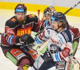 Adam Polášek a Alexandre Mallet - 22. kolo Tipsport Extraligy HC VÍTKOVICE RIDERA - HC Sparta Praha, 27. listopadu 2019 v Ostravě.
